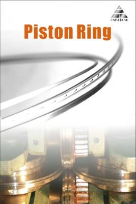 Piston ring -1