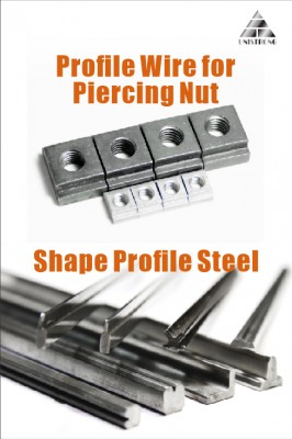 Piercing Nut and profile steel